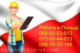 Services for opening a visa to Europe, work in Poland